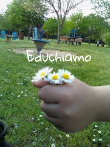 Clicca sull'immagine per accedere al blog Educhiamo!